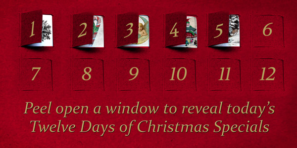 Twelve Days of Christmas - Digital Retail Promotion