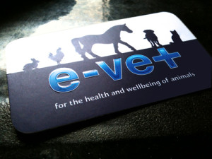 Evet Brand/Business Card